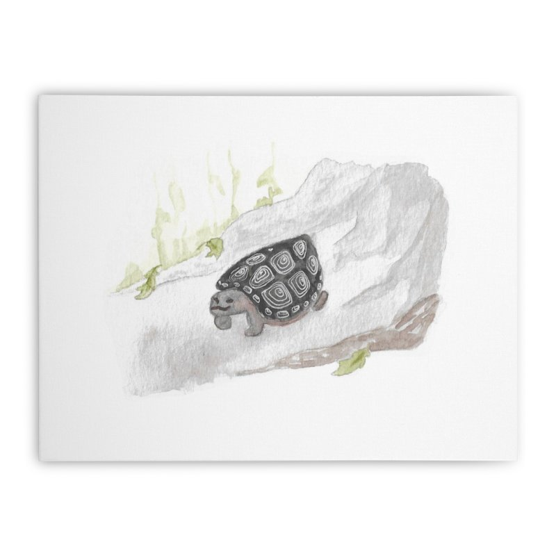 Watercolor Forest Wood Turtle Home Stretched Canvas by The Wilderness Store