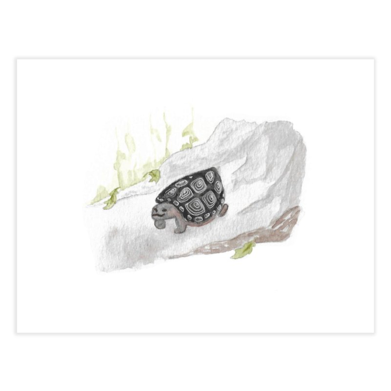 Watercolor Forest Wood Turtle Home Fine Art Print by The Wilderness Store