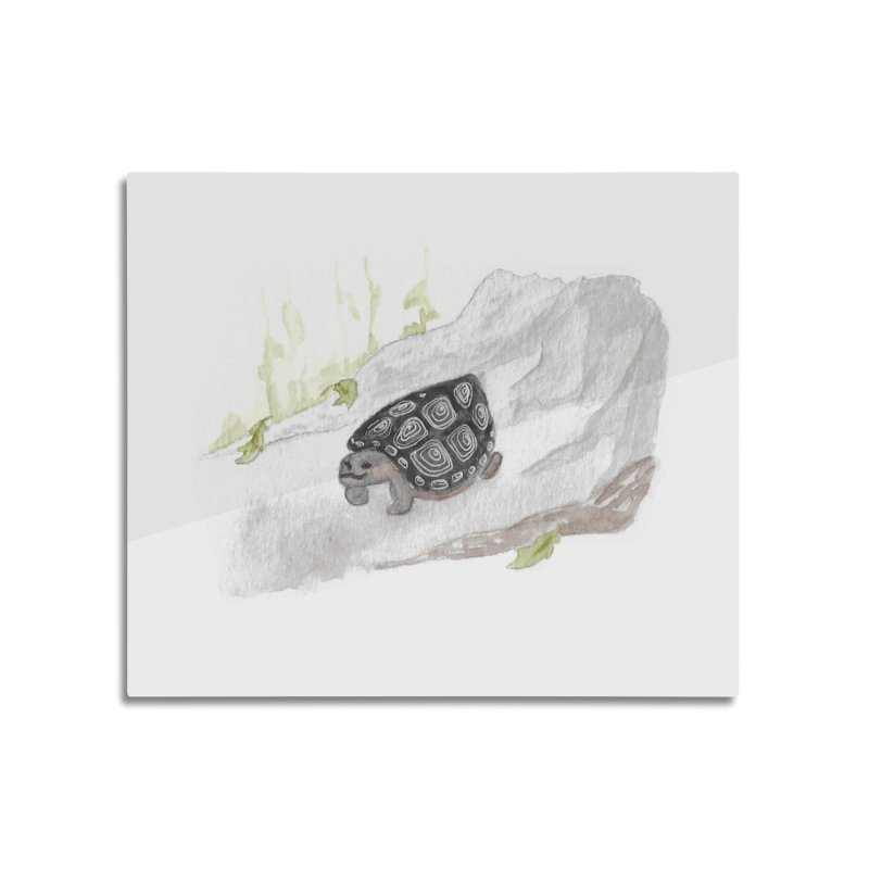 Watercolor Forest Wood Turtle Home Mounted Aluminum Print by The Wilderness Store