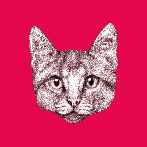 Design for Pink Cat