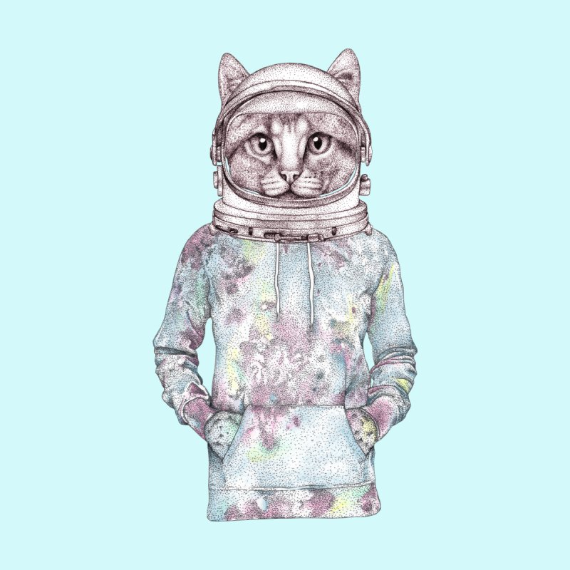 Space Cat Home Stretched Canvas by WukashDesigns Artist Shop