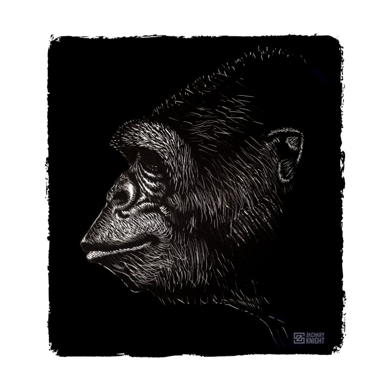 Koko Men's T-Shirt by Zachary Knight | Artist Shop