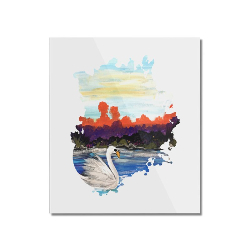 Swan Life Home Mounted Acrylic Print by adamzworld's Artist Shop