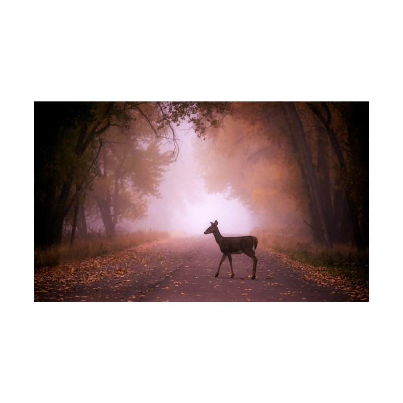 Foggy Doe Prints Fine Art Print by Glassmeyer Photography Print and Gift Shop