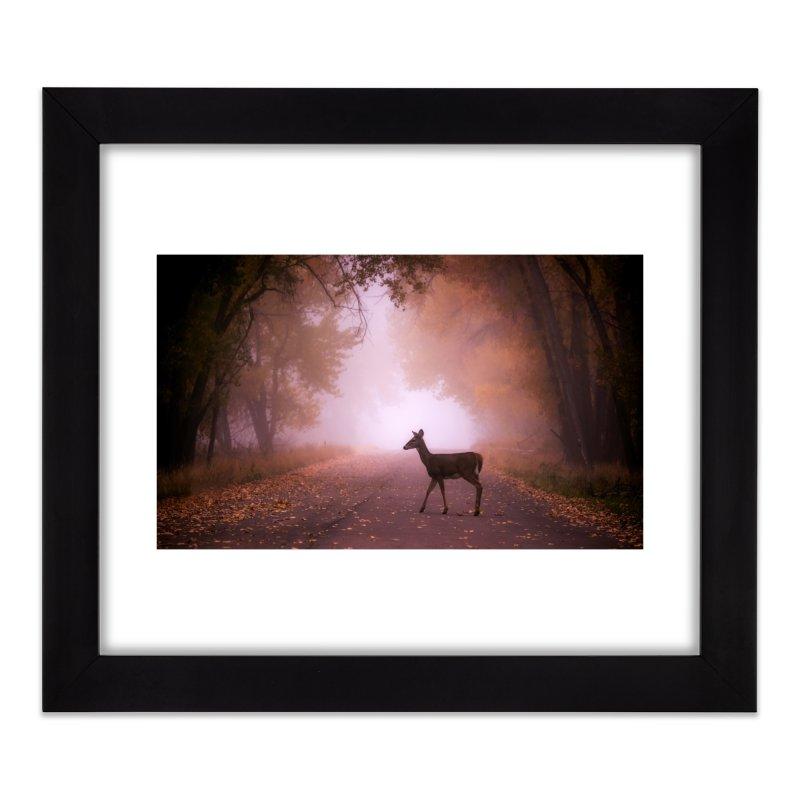 Foggy Doe Prints Framed Fine Art Print by Glassmeyer Photography Print and Gift Shop