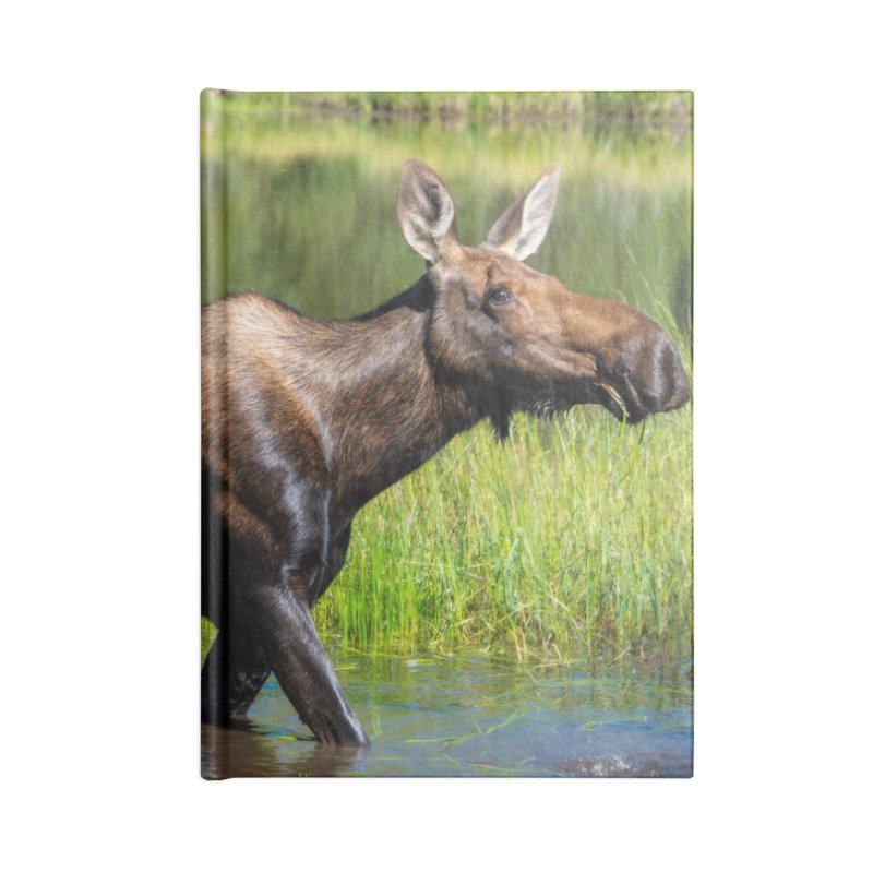 Grazing Moose Cards & Gifts Notebook by Glassmeyer Photography Print and Gift Shop
