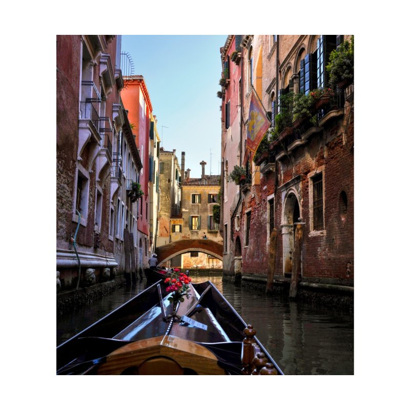 Venetian Gondola Ride Cards & Gifts Phone Case by Glassmeyer Photography Print and Gift Shop
