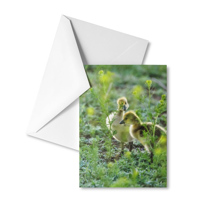 Cards & Gifts None by Glassmeyer Photography Print and Gift Shop