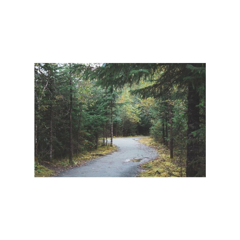 Forest Trail Home Fine Art Print by AirStory's Shop