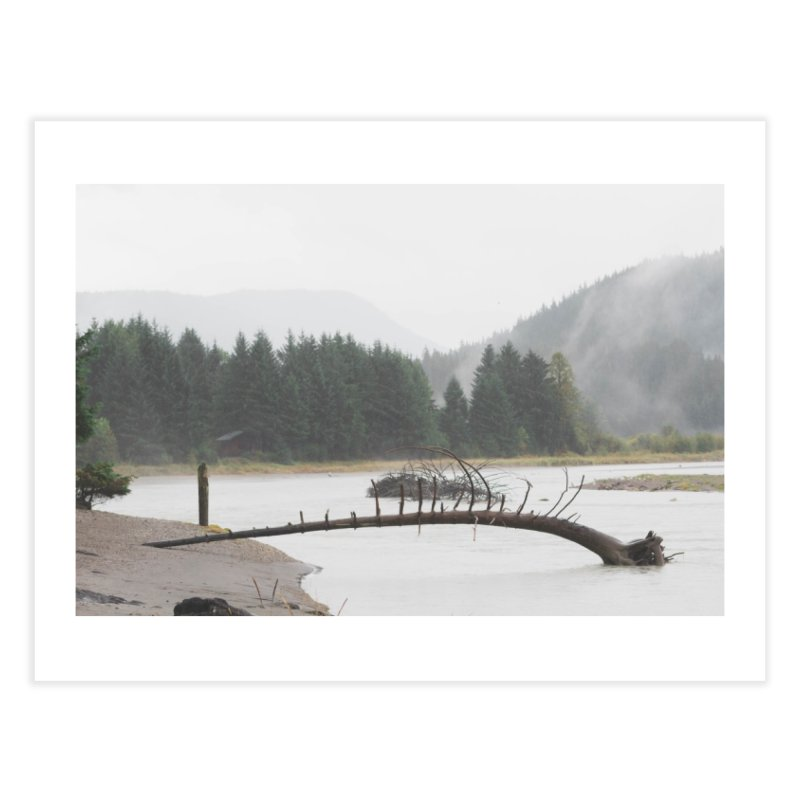 River Tree Home Fine Art Print by AirStory's Shop