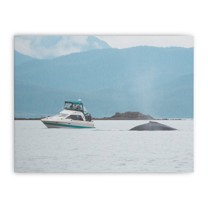 Whale Watching Home Stretched Canvas by AirStory's Shop