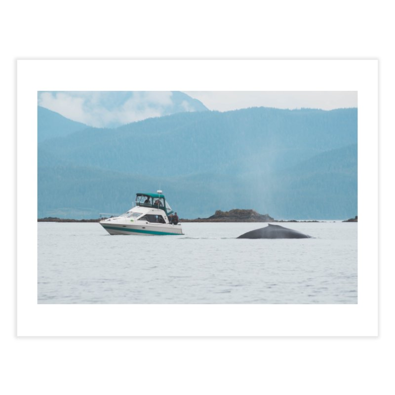 Whale Watching Home Fine Art Print by AirStory's Shop