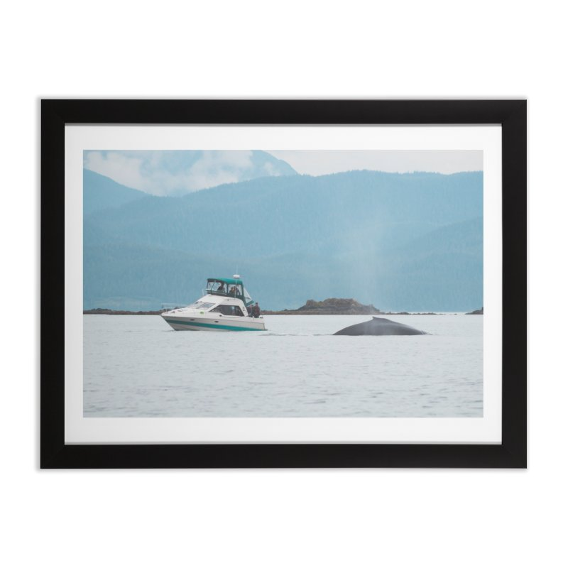 Whale Watching Home Framed Fine Art Print by AirStory's Shop