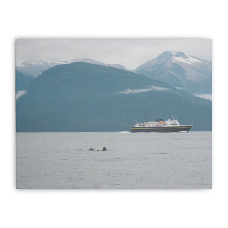 Sea Lion Swim Home Stretched Canvas by AirStory's Shop