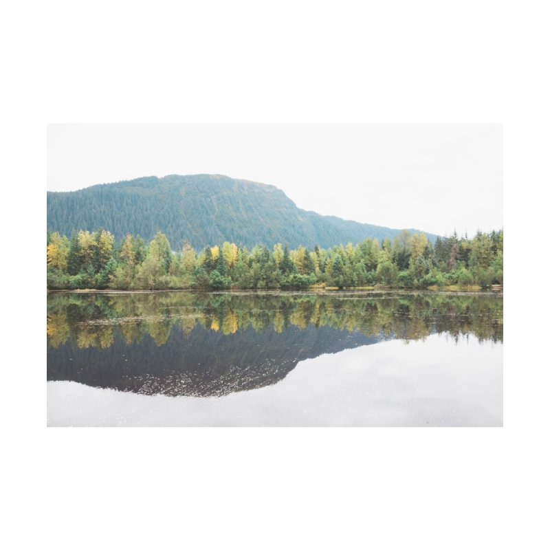 Beaver Lake Home Stretched Canvas by AirStory's Shop