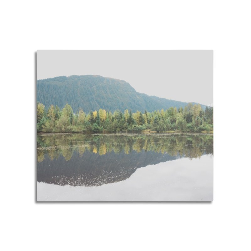 Beaver Lake Home Mounted Aluminum Print by AirStory's Shop