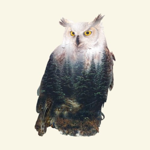 Design for AUTUMN OWL