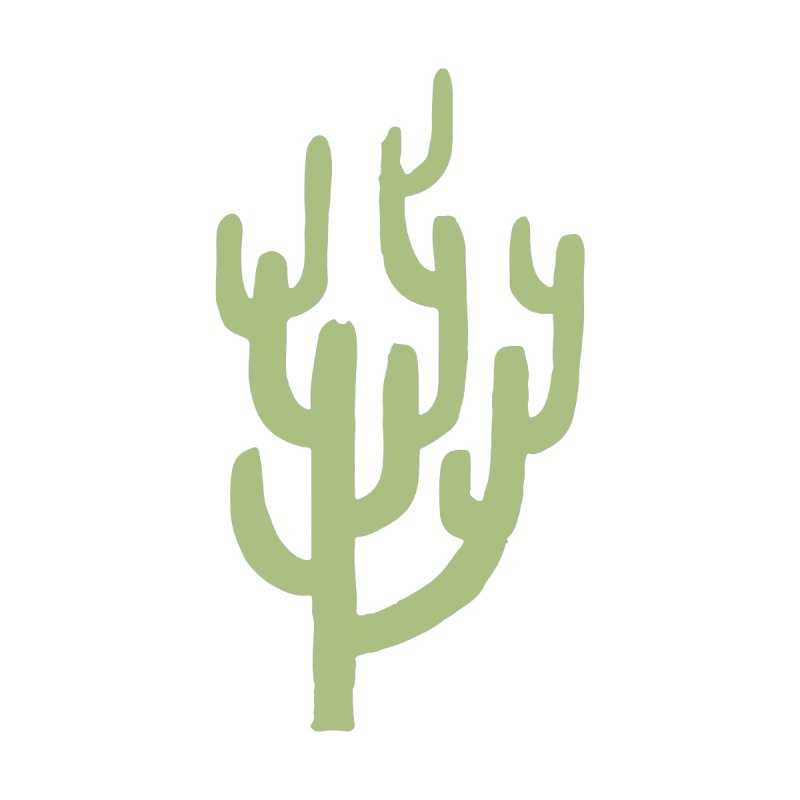 Cactus Number Two by Zach Woomer's Little Shop
