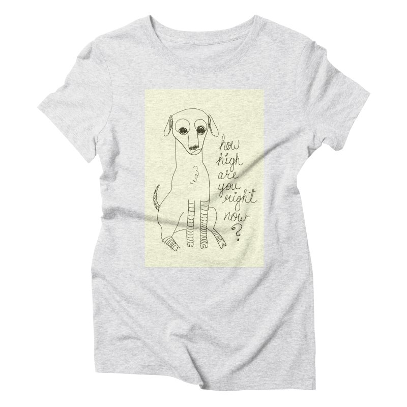 From the Sketch Book Women's Triblend T-Shirt by Zach Woomer's Little Shop