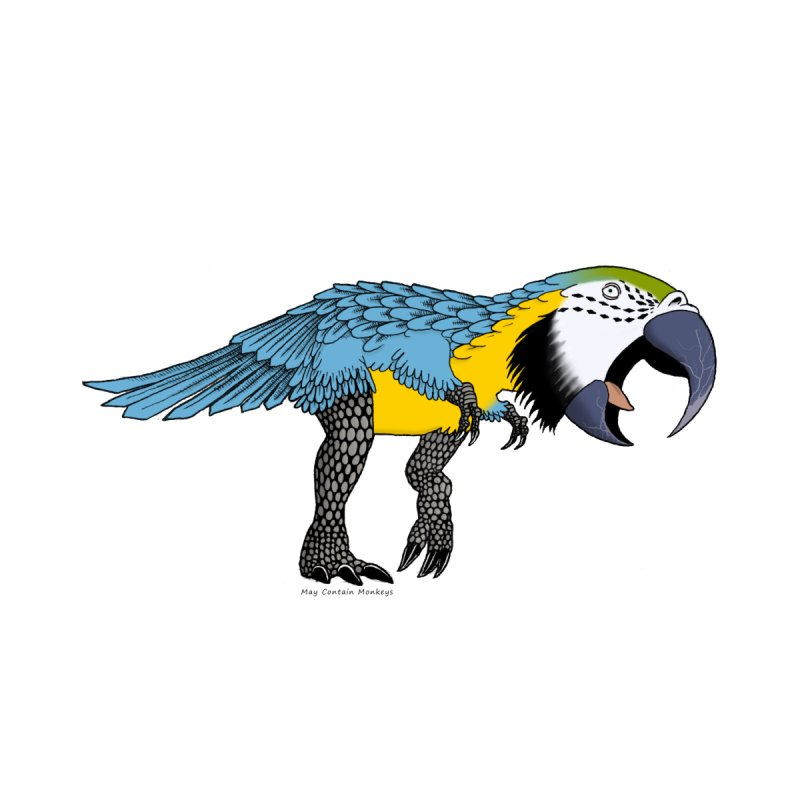 parrot Women's Tank by allandotson's Artist Shop