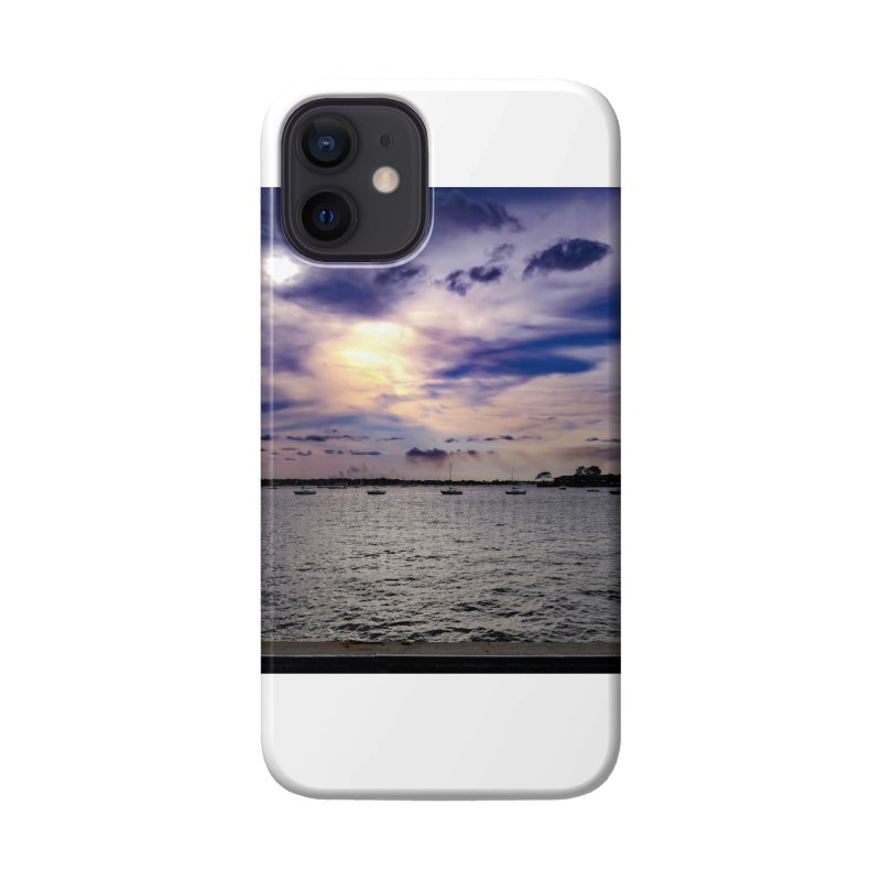Eyes In The Sky Accessories Phone Case by Allen Williams