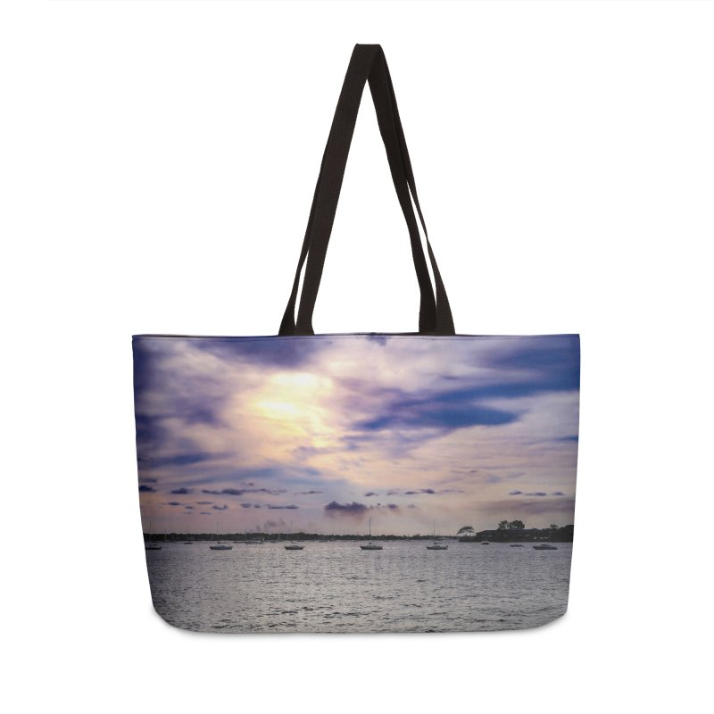 Eyes In The Sky Accessories Bag by Allen Williams