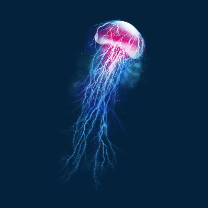 jellyfish storm None  by alnavasord's Artist Shop