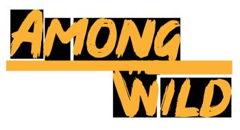 Among The Wild Logo