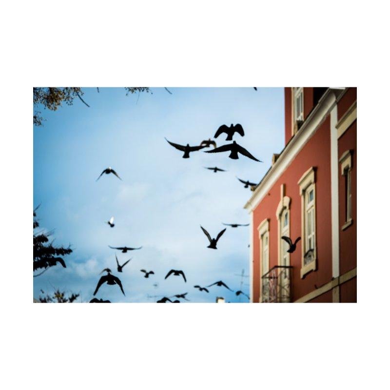 Birds in flight by amplified's Shop