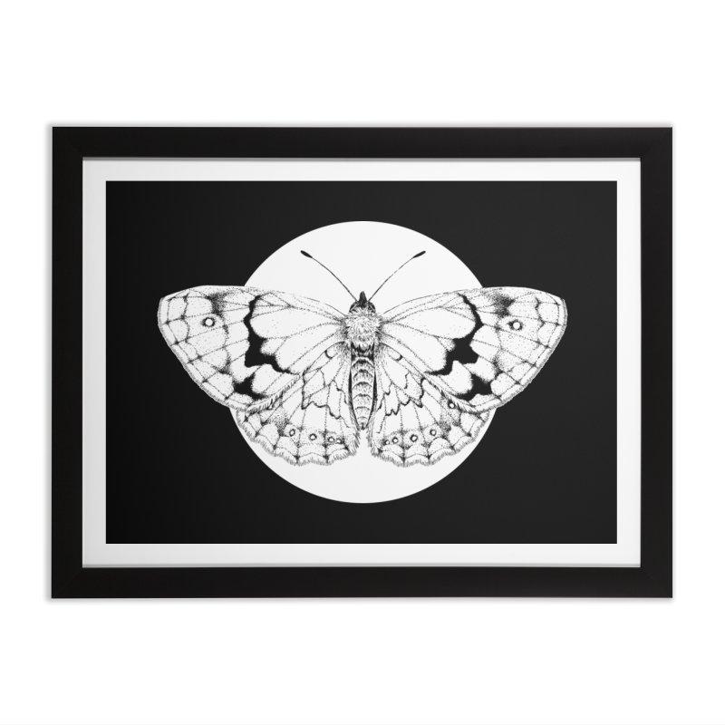 Sun butterfly Home Framed Fine Art Print by Anaïs Faë