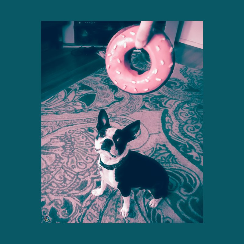 Bea & The Donut by An Authentic Piece