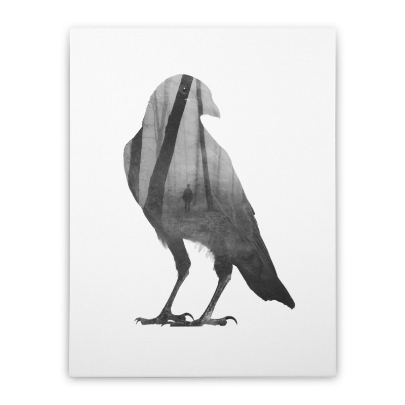 Crow Home Stretched Canvas by Andreas Lie