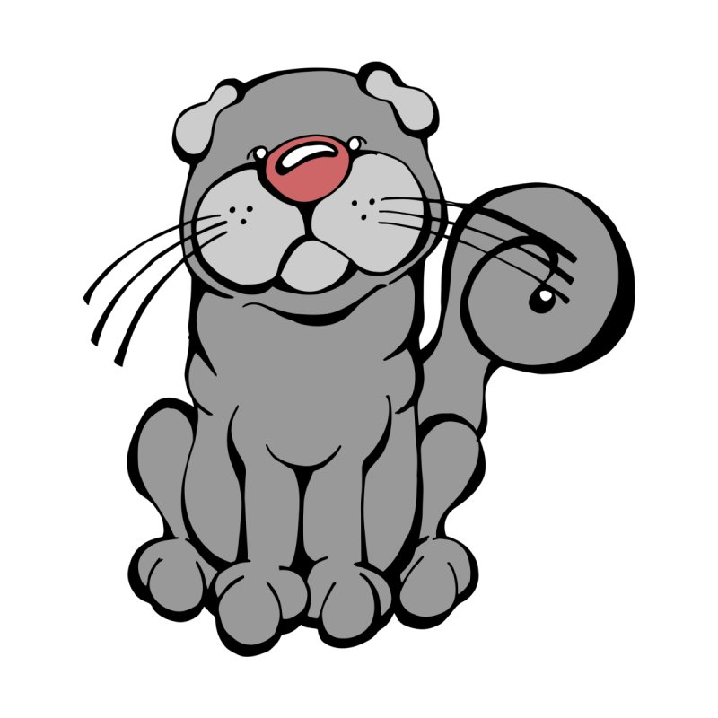 Scottish Fold by Angry Squirrel Studio