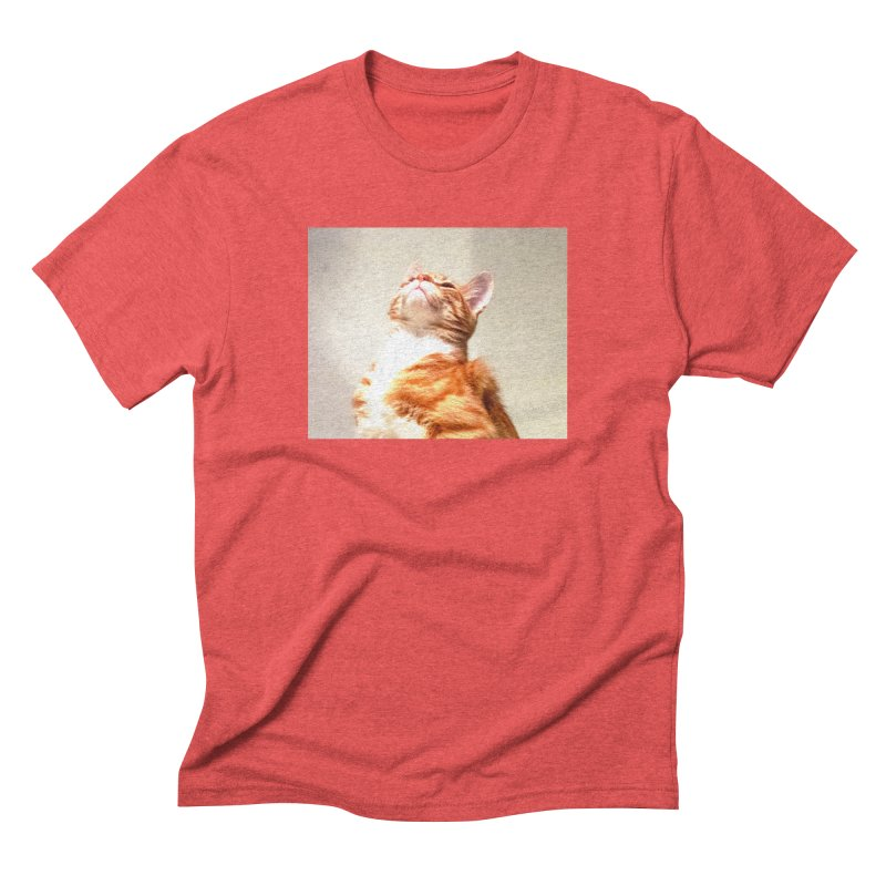 Pelage in Men's Triblend T-Shirt Chili Red by Anthony Inswasty