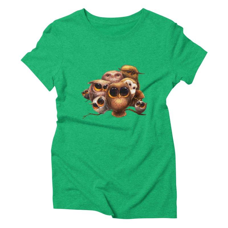 Little Owls Women's Triblend T-Shirt by AntoZ