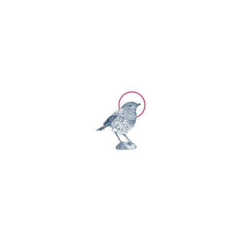 Design for Blue Chapter Bird