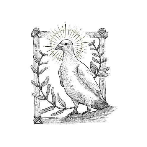 Design for Dove