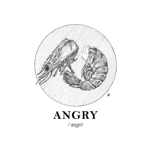 Design for Angry