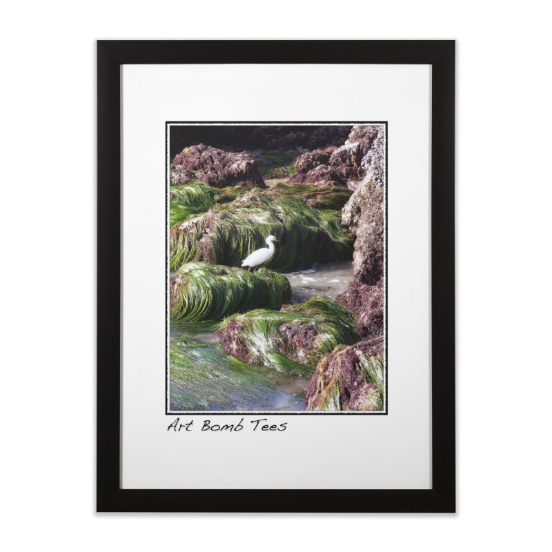 The Cove Home Framed Fine Art Print by artbombtees's Artist Shop