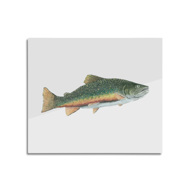 Brook Trout PNG Home Mounted Aluminum Print by Art By BB's Artist Shop