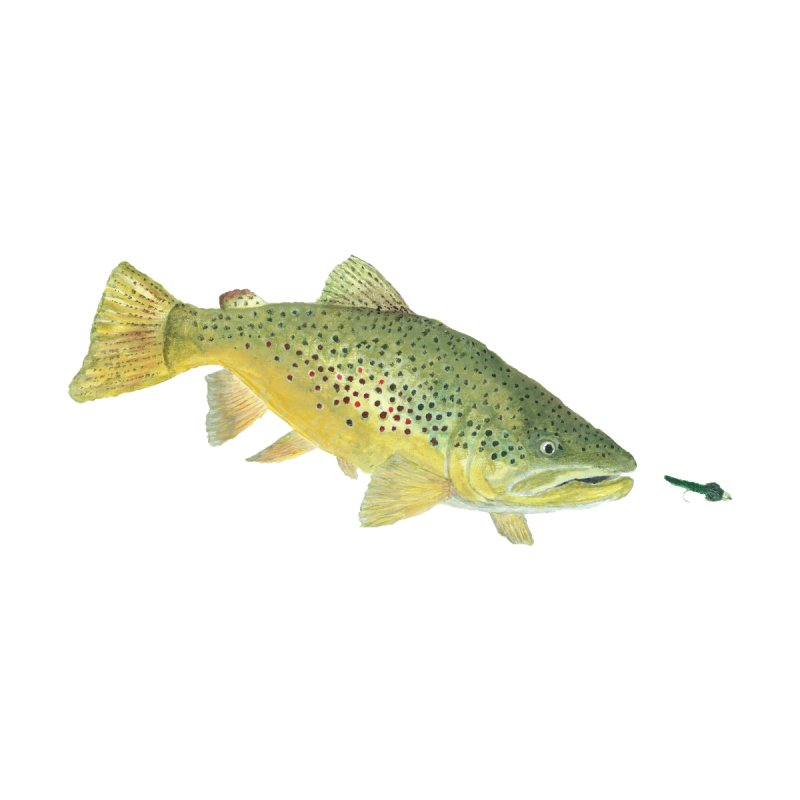 Brown Trout with fly Home Bath Mat by Art By BB's Artist Shop