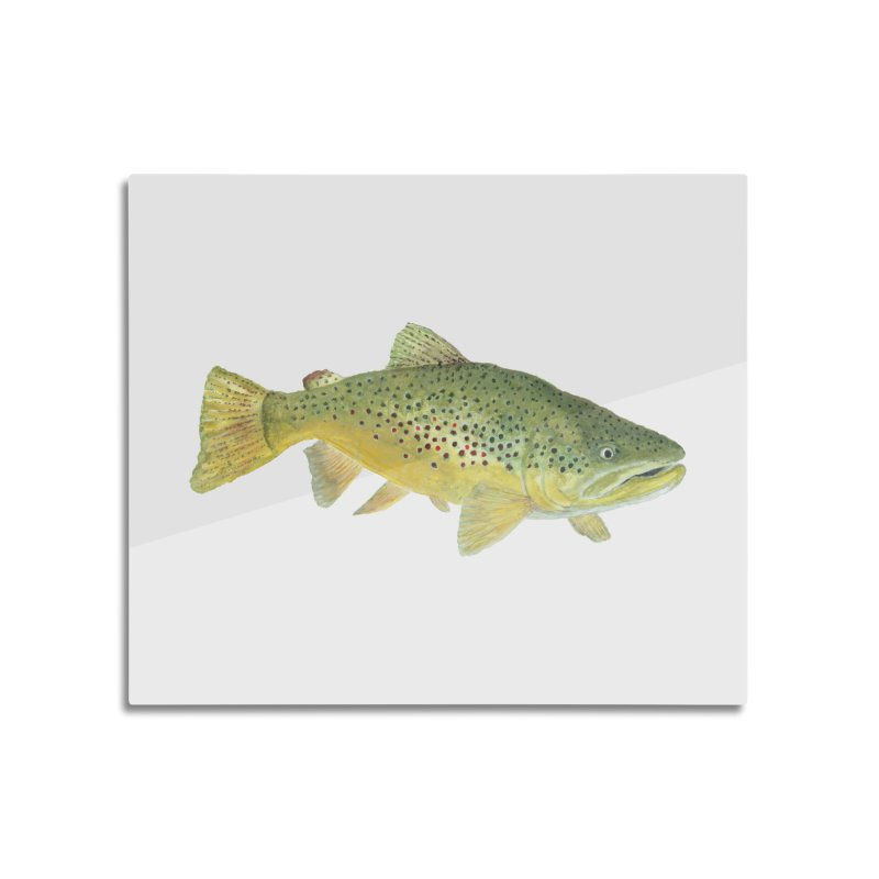 Brown Trout PNG Home Mounted Aluminum Print by Art By BB's Artist Shop