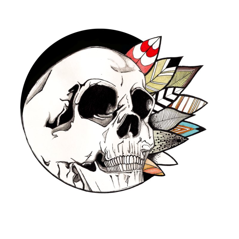 Indie Skull None  by artichoke's Artist Shop