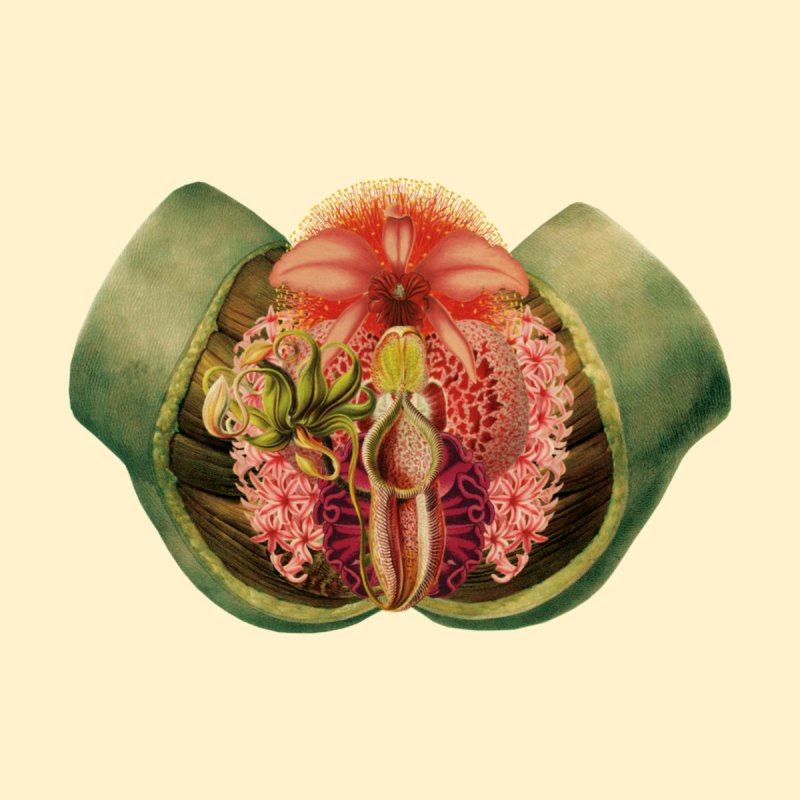 Lady Garden Botanical Anatomy by Art of Marabelle's Artist Shop