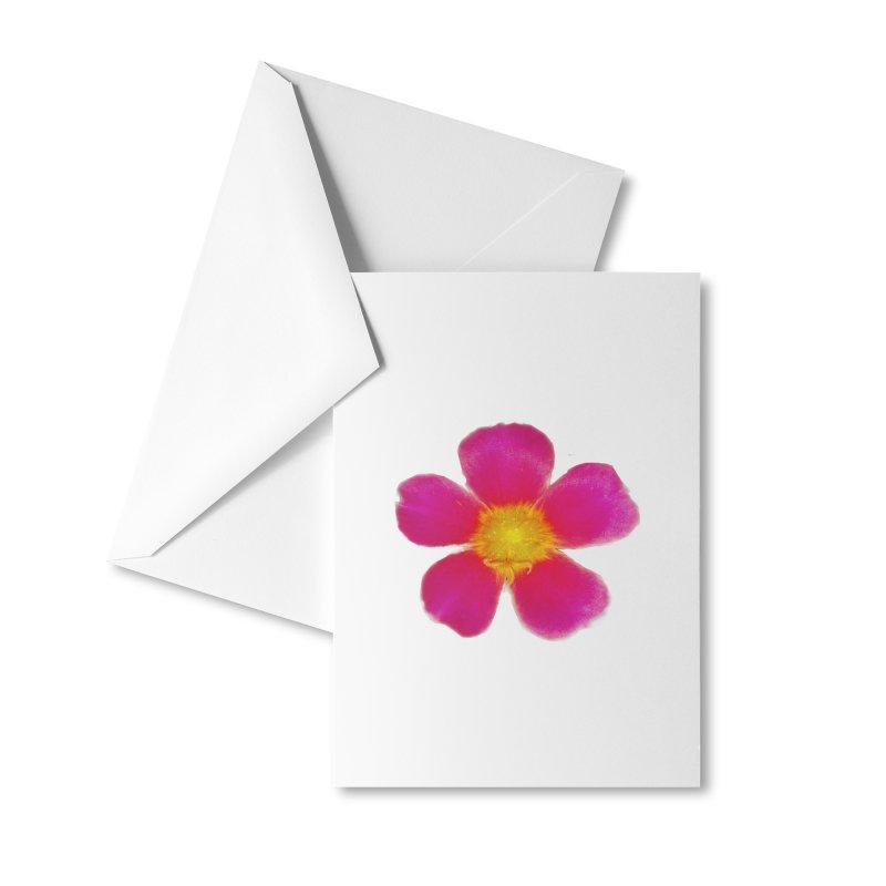 Purslane Toucan Fuchsia Accessories Greeting Card by ❁Art Peace Designs❁