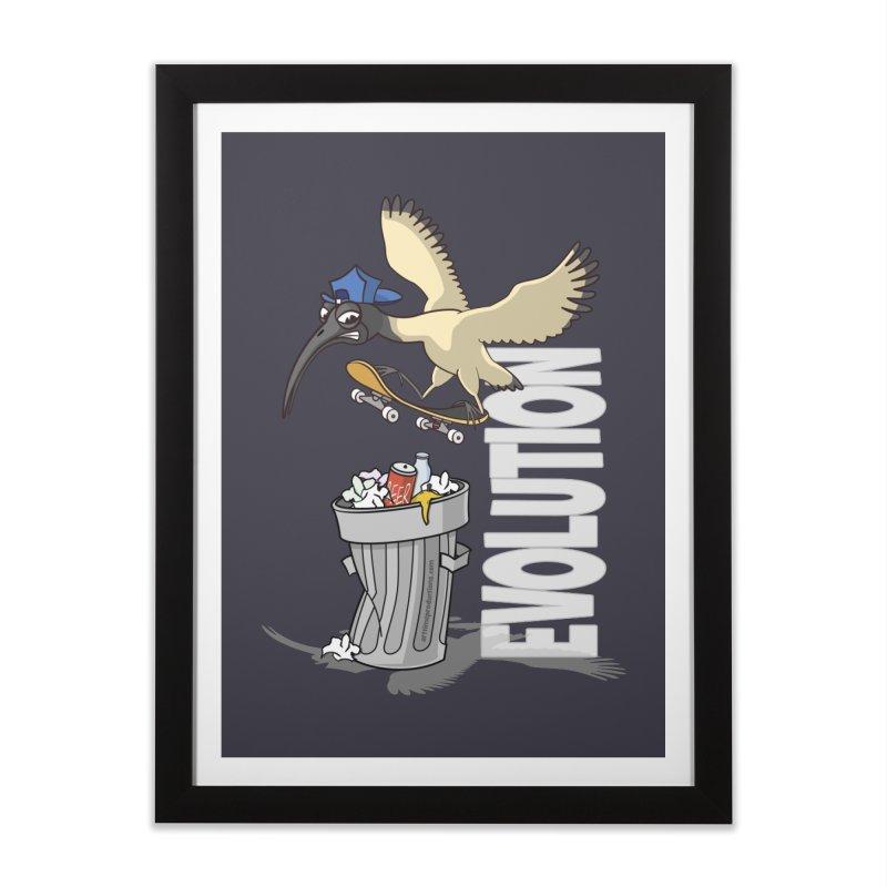 Bin Chicken Ibis Evolution Skateboarder Australian Bird Home Framed Fine Art Print by Art Time Productions by TET
