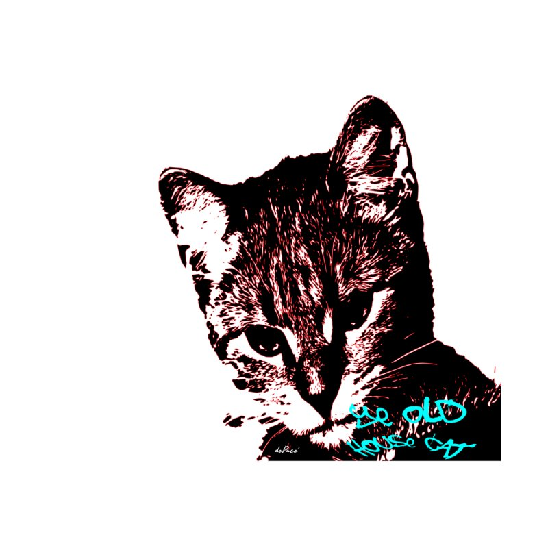 Ye Old House Cat by artworkdealers Artist Shop