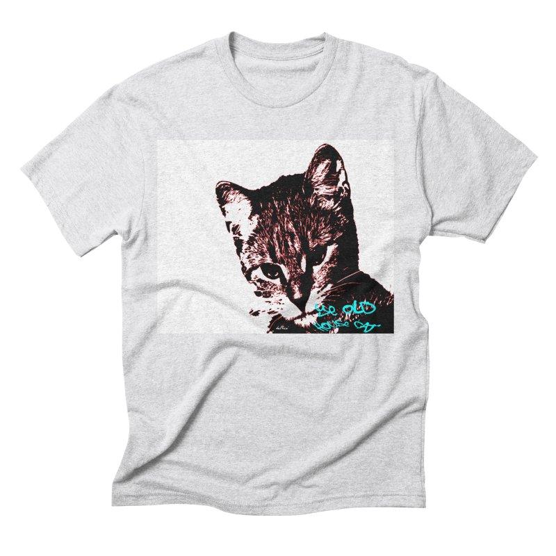 Ye Old House Cat Men's Triblend T-Shirt by artworkdealers Artist Shop