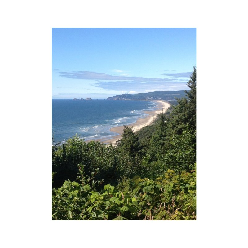 Oregon Coast Journals & Prints Home Fine Art Print by Aspect Black™