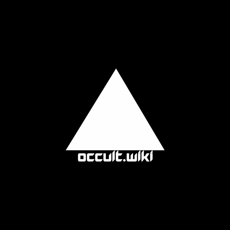 occult.wiki Logo Apparel - Dark Men's Zip-Up Hoody by Aspect Black™